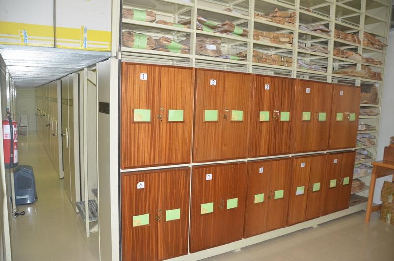 Sistemática Vegetal y Herbario 1 -