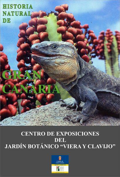 Historia natural de gran canaria jard n bot nico viera y for Jardin botanico viera y clavijo