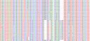Secuencia ADN -