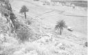 El Jardín 1952 -