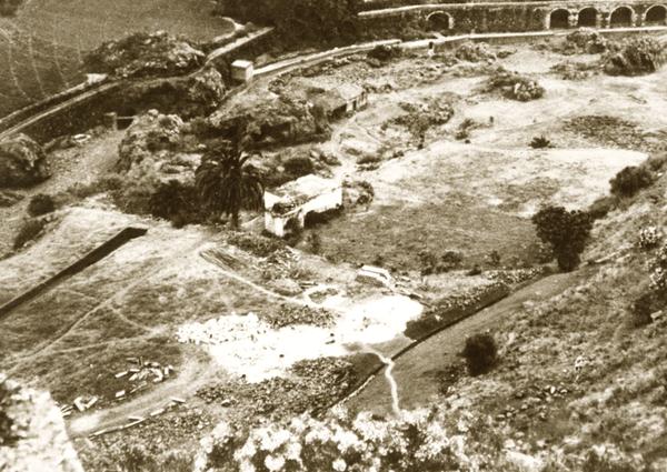 Jardín Canario 1952 -