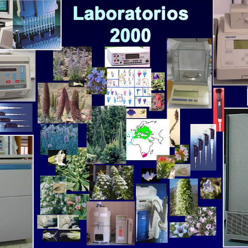 Laboratorios 2000
