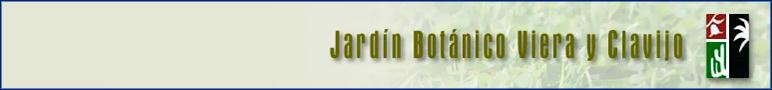 El jard n jard n bot nico viera y clavijo for Jardin botanico viera y clavijo